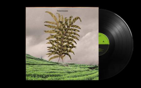 Teleluke & China White - Telechinese LP