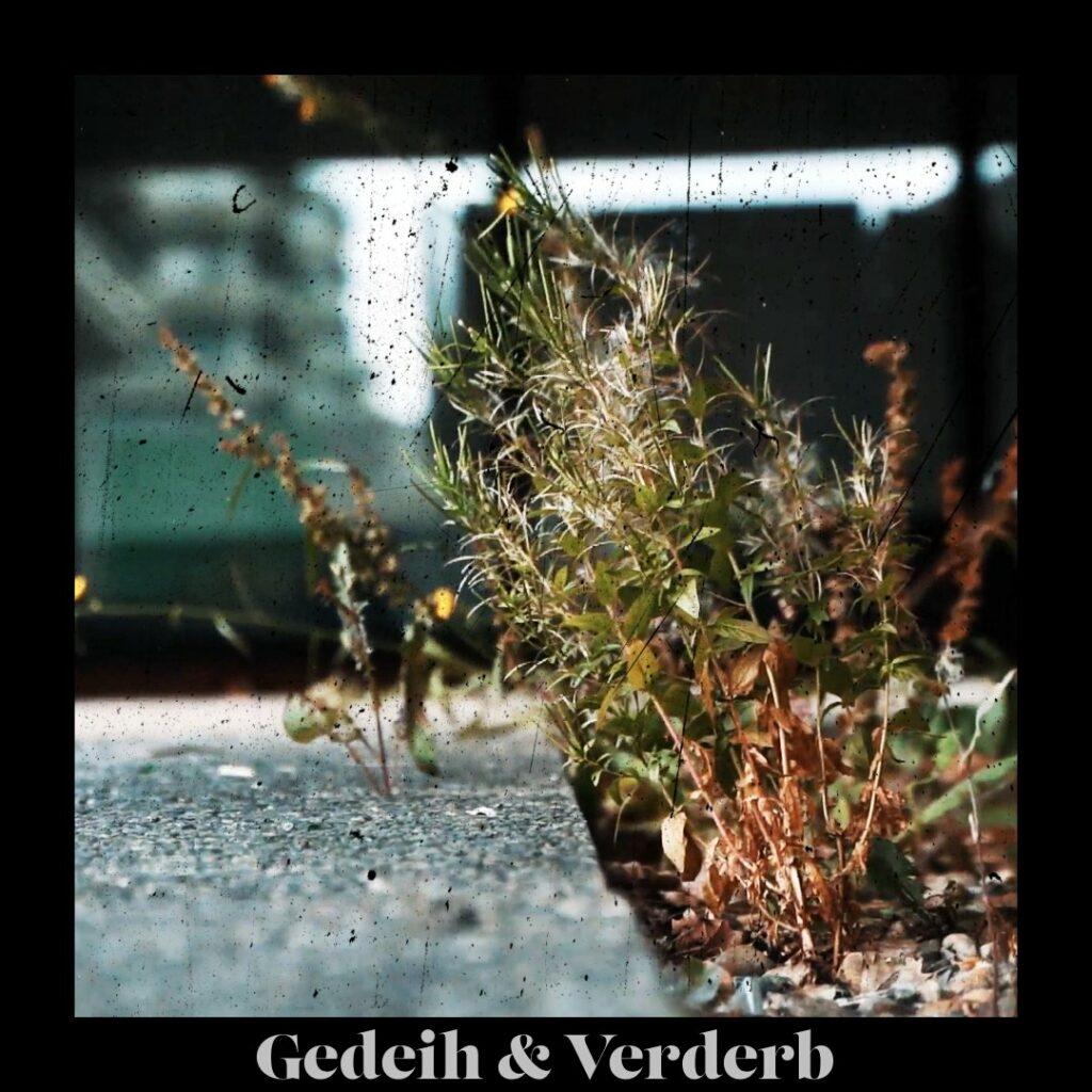 Gedeih & Verderb